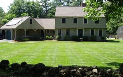 Why do you need to plant your lawn in late summer?